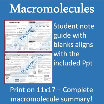 Macromolecules Unit Overview - Guided Notes