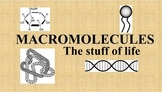 Macromolecules Worksheet, Power Point, Flash Cards, & Sort