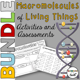 Macromolecules of Living Things Activities and Assessments Bundle