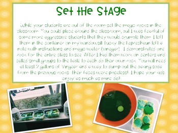 Magic Leprechaun Rocks - St. Patrick's Day Fun