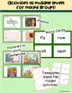 Homonyms: Picture Activities and Worksheets: Multiple Meanings A