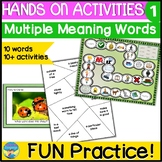 Homonyms Activities 1 | Hands On Picture Fun | Multiple Me