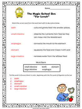 "Digestive System Magic School Bus ""For Lunch""  Video Response Form"