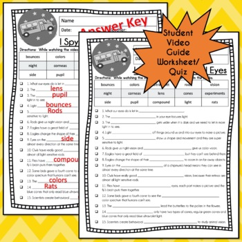 Magic School Bus Rides Again I SPY WITH MY ANIMAL EYES Video Guide, Worksheets