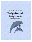 Magic Tree House #9 Dolphins at Daybreak Comprehension Questions