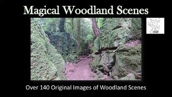 Magical Woodland Scenes for Inspiration