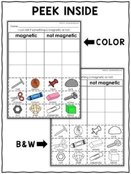 Interactive Sorting - Magnet Activity