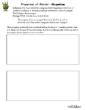 Magnetism Lab Worksheet