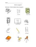 Magnets: What is Magnetic?  Kindergarten