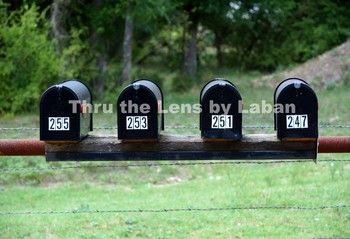 Mailboxes with Numbers Stock Photo #196
