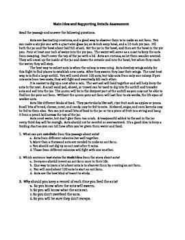 Main Idea Assessment