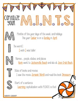 MINTS Mini Anchor Chart