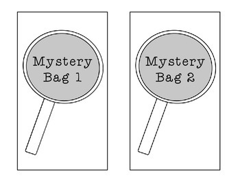 Main Idea Mystery Bag Activity *Top Seller*