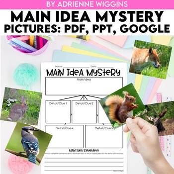 Main Idea Mystery Bags