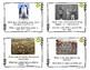 Main Idea Picture Task Cards