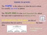 Main Idea PowerPoint Lesson