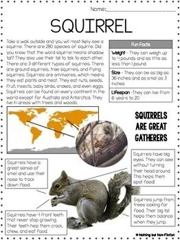 Main Idea Reading Passages: Spring Animals ::FREEBIE::