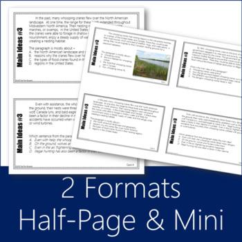 Main Idea Task Cards 3 (Grades 6-8)