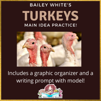 Main Idea Turkeys by Bailey White main idea practice