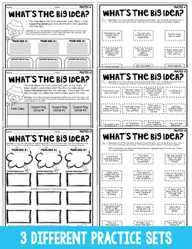 Main Idea & Supporting Details Practice | Activities Using Graphic Organizers