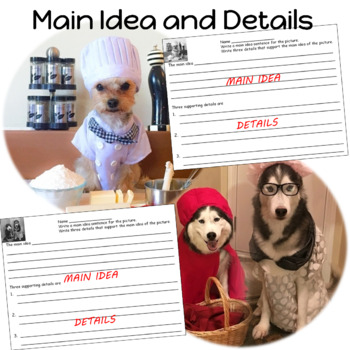 Main Idea and Details Practice Activity