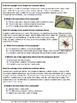 Main Idea and Details Multiple Choice Quizzes -- Common Co