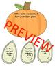 Main Idea and Details Pumpkin and pumpkin seeds sort