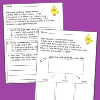 Main Idea and Details Reading Comprehension Passages and Questions {Set One}