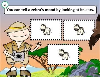 Main Idea and Details: ZEBRAS