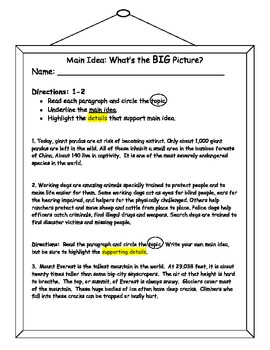 Main Idea and Supporting Details Practice Worksheet