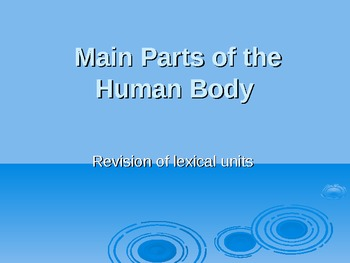 Main Parts of the Human Body