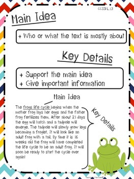 Main Idea And Key Details Activity Set By Teaching At The