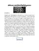 Mains et Merveilles: Artisans Presentation Project