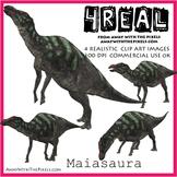 Maisasaura - 4 Realistic Dinosaur Clip Art Images