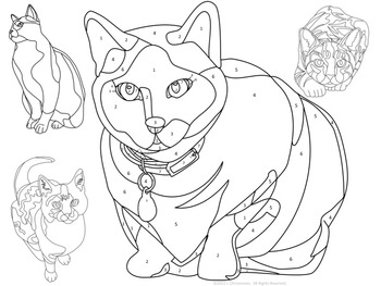 Make Your Own Color By Number Cats (Editable)