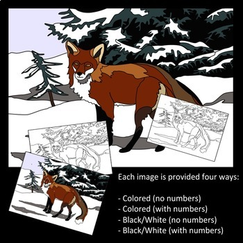 Make Your Own Color by Number Mammals (Bundle)