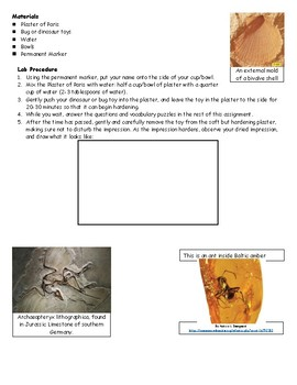 Make-Your-Own Fossil Activity