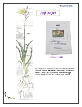 Make Your Own Plant Foldable