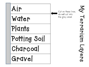 Make Your Own Terrarium Kit ~ Interactive Science Notebook Pack