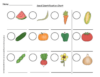 Plants- Make a Seed Identification Chart