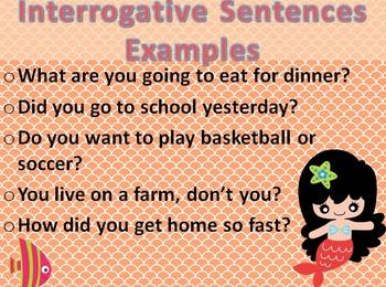 Make a Splash with The 4 Sentence Types Unit