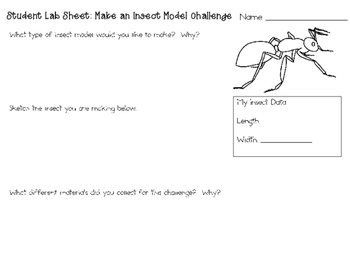 Make an Insect Model ~ Monthly STEAM School-wide Challenge