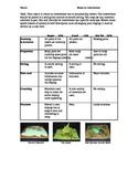 Make an Invertebrate Rubric