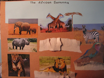 Make your own African savanna habitat on paper, and more