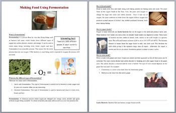 Making Food Using Fermentation - Science Reading Article - Grades 5-7