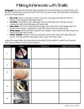 Making Inferences with Shells