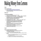 Making Money From Lemons Microsoft Excel Project (older ve