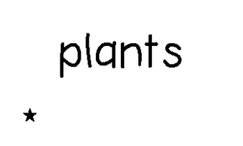 Making Nouns Plural