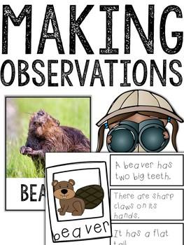 Making Observations HABITATS Bundle