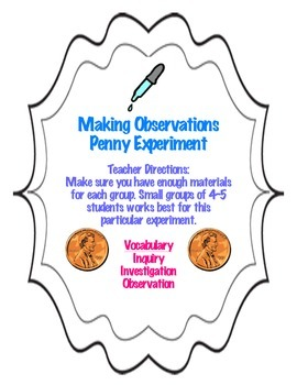 Making Observations, Investigating, and Inquiring Penny Ex